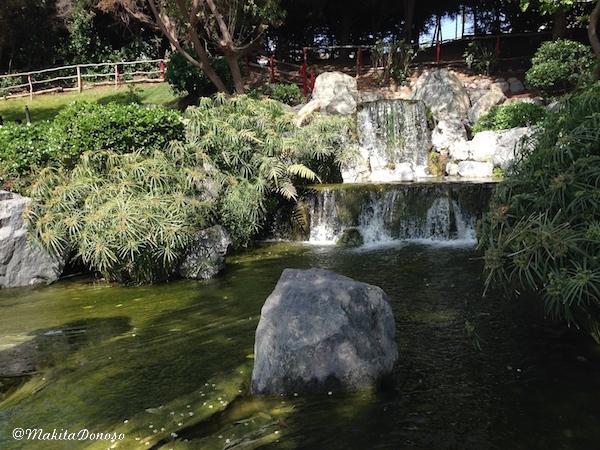 JardinJapones02_makitaDonoso