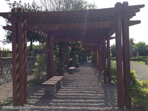 JardinJapones09_makitaDonoso